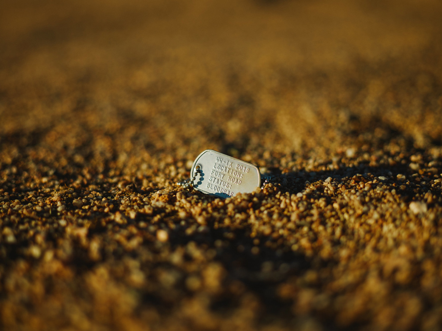 Dog tags lie in the sand